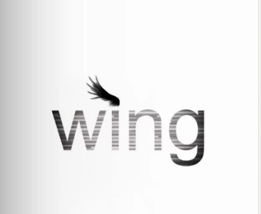 WING.pdf