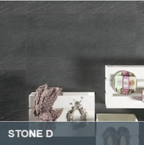 Stone_D.pdf