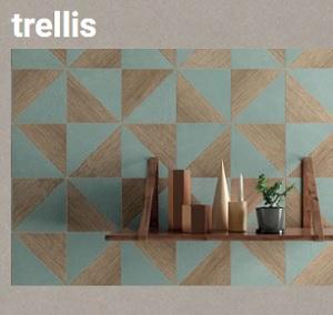 TRELLIS.pdf