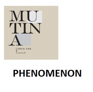 PHENOMENON.pdf