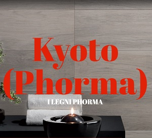 KYOTO.pdf