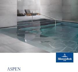 Aspen.pdf
